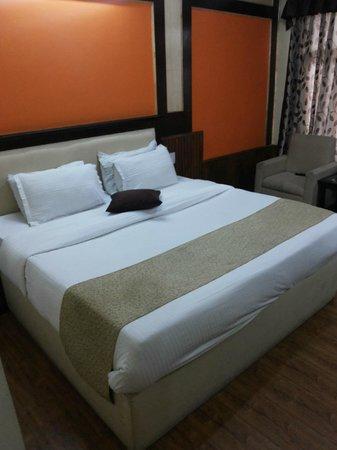 Hotel Himgiri: Room - 106