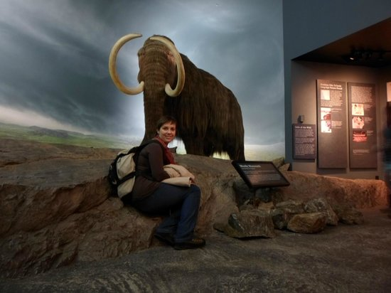 IMAX Victoria In the Royal BC Museum: Mamute