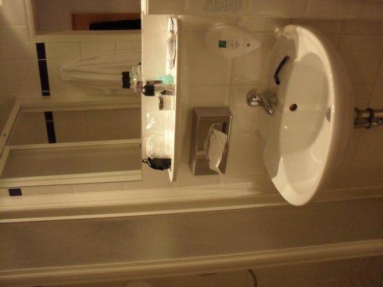 Ibis Dresden Bastei: bathroom