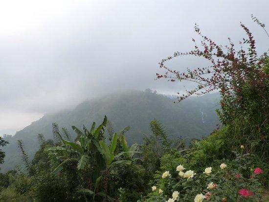 The View: Avec le brouillard