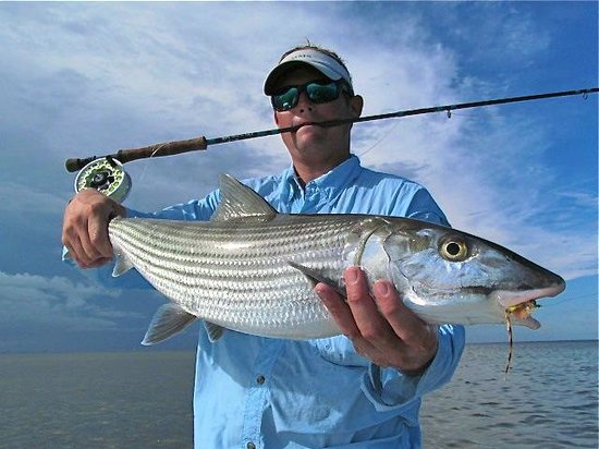 Fly fishing for bonefish in miami florida picture of for Bonefish fly fishing