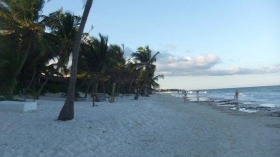 Amelie Tulum: Beautiful beach