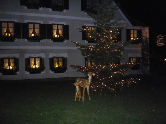 atmosfera natalizia a Fraueninsel con l'albero di Natale e il cerbiatto con il suo piccolo