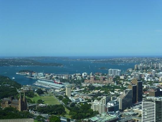 Meriton Serviced Apartments World Tower : view from the 74th floor