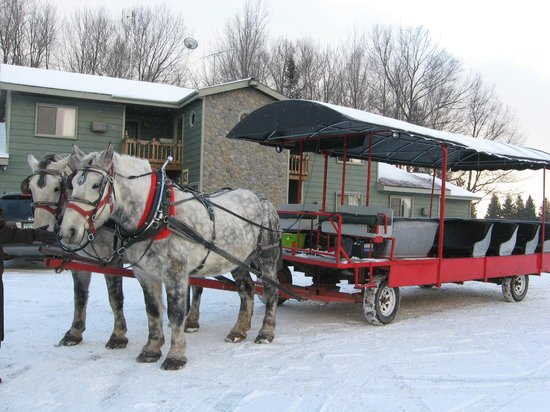 Thunder Bay Resort: Horse-drawn Wagon to See Elk and Get to Restaurant