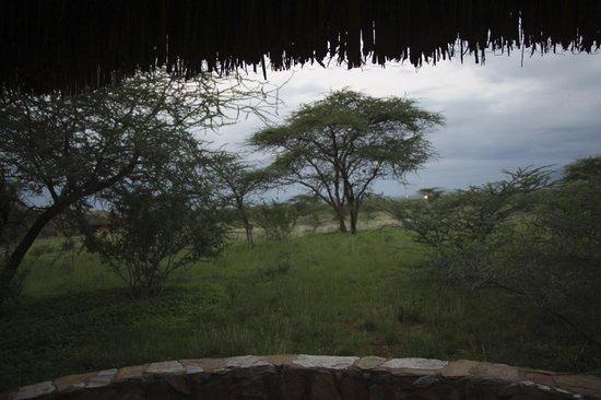 Samburu Sopa Lodge: Terraza
