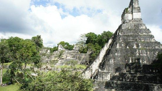 วิหารที่ 4: view of Tikal