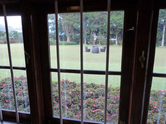Ferncliff: vue de la fenêtre de la chambre