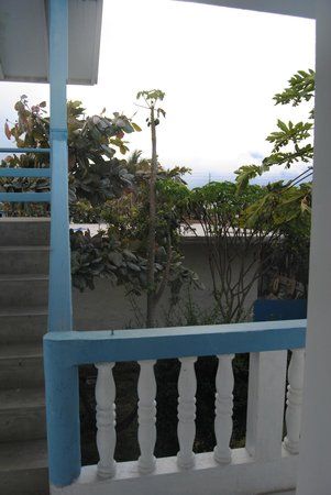 Hostal Loja: Garden/patio view