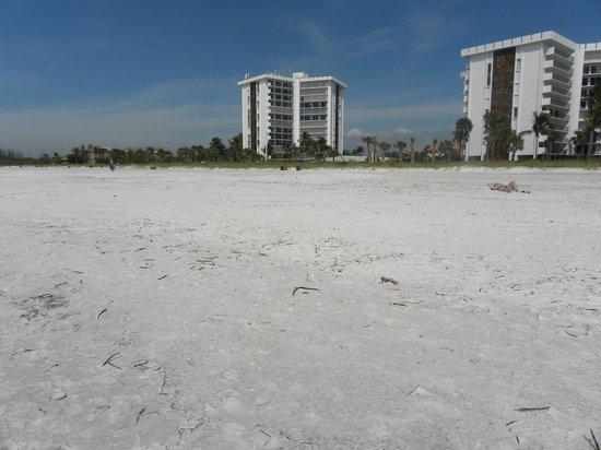 Lido Beach: пляж3