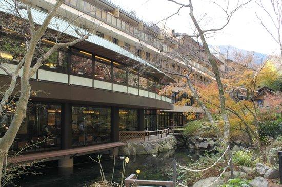 Tenseien: Hotel backyard area