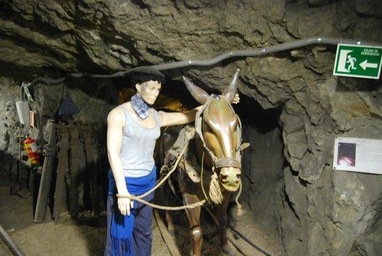 Museo minero Escucha: Antes de las máquinas cargadoras, tenian ayuda animal.