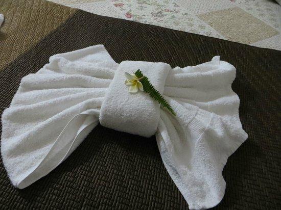 Tupa Hotel: Towel art