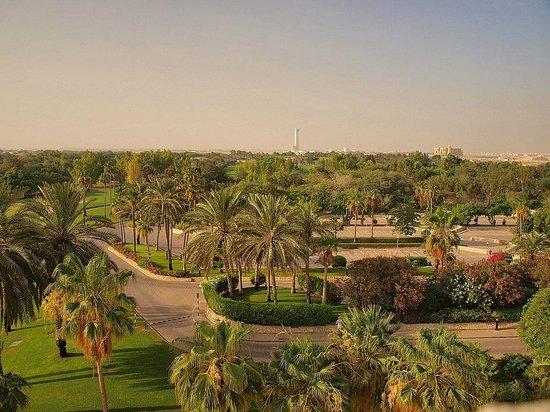 JA Jebel Ali Beach Hotel : вид с балкона