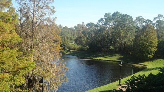 Best River View Rooms At Port Orleans French Quarter