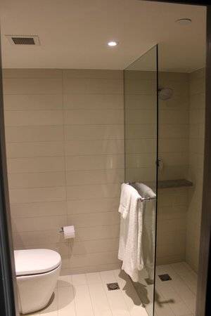 Hyatt Regency Sydney: Basic bathroom