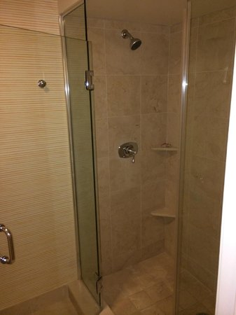 Tropicana Las Vegas - A DoubleTree by Hilton Hotel : Stand up giant shower
