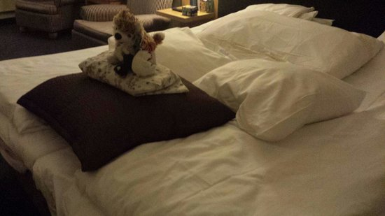 """Clarion Collection Hotel With: My son is delighted that his toy dog n his friends are well """"taken care"""" of after our make up ro"""