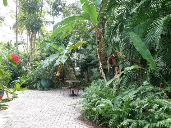 Riverside Hotel : Garden