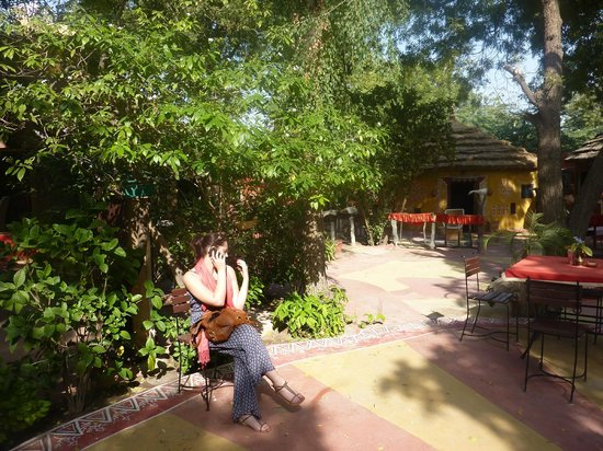 Mandore Guest House - a leafy resort.: around the entrance
