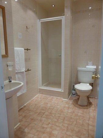 The Sandyford Hotel : Baño de la habitación