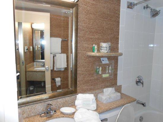Holiday Inn Saratoga Springs: Bathroom