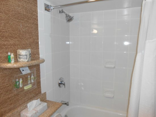 Holiday Inn Saratoga Springs: Bathroom small but adequate for needs