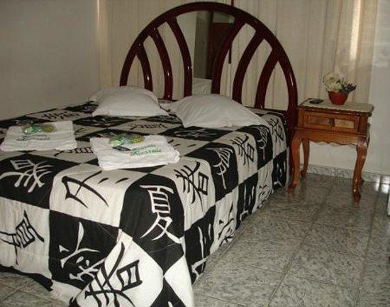 Hotel Pousada Alvorada: Apartamento