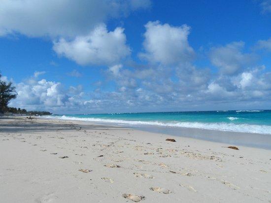 Sivananda Ashram Yoga Retreat: beach at ashram