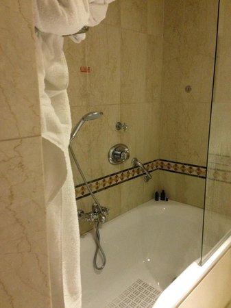 Sofitel Rome Villa Borghese: Bath