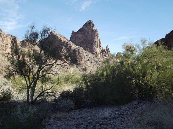 Kofa National Wildlife Refuge Arizona All You Need To