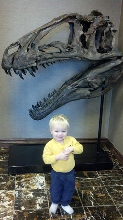 Best Western Denver Southwest: Dinosaur in lobby
