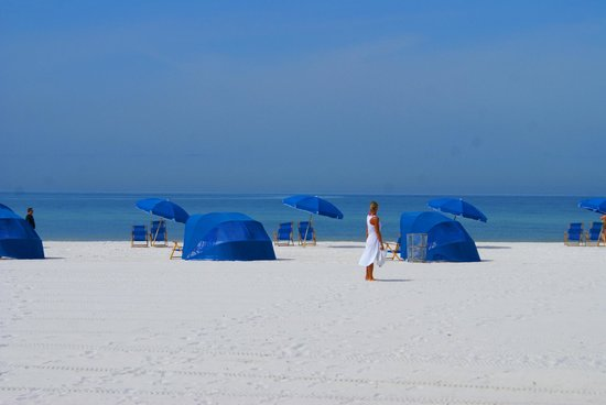Pelican Pointe Hotel and Resort: A Day At Clearwater Beach