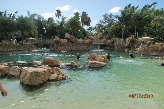 Discovery Cove: Praia 1