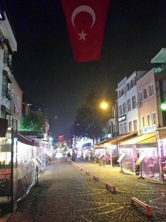 Gul Sultan Hotel: street at winter