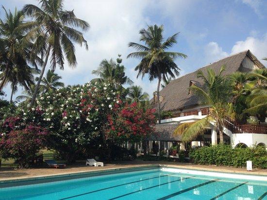 Reef Hotel: Pool