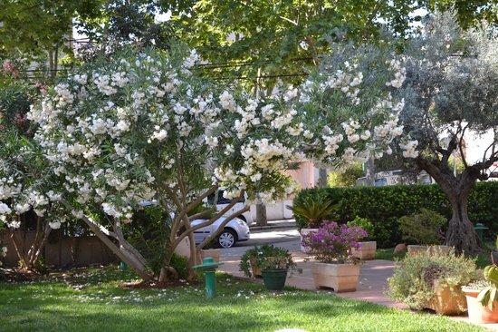 Araxa Hotel: Araxa- front garden