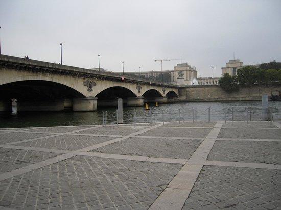 Batobus : 橋の向こうがシャイヨー宮、手前がエッフェル塔
