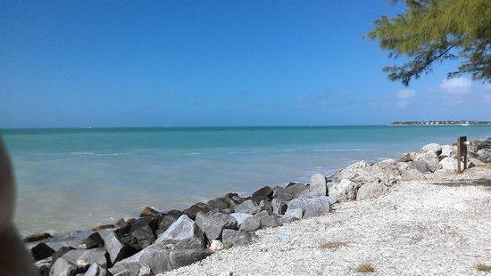 Key West Eco Tours: Amazing place
