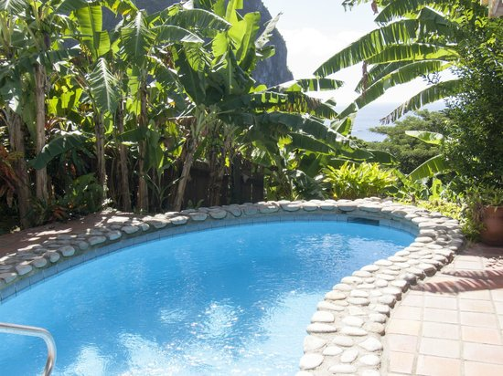 Stonefield Estate Resort: Privater Pool
