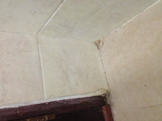 Swiss-Belhotel Manokwari: Bathroom-floor dirt everywhere
