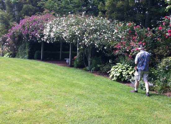 Doolan's Country Retreat : View of the Gardens