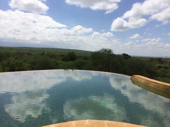 Satao Elerai: View from pool near dining area