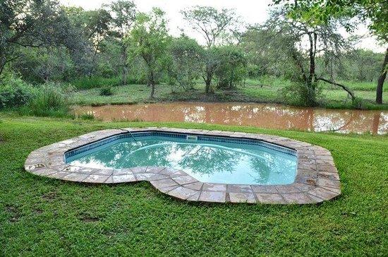 Mulati Safari Camp: Pool