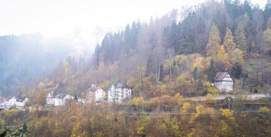 BEST WESTERN PLUS Hotel Schwarzwald Residenz: View from balcony
