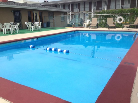 Town House Motel: Heated Pool