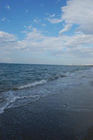 Roxani Hotel: Пляж