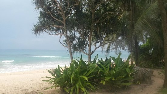 Natai Beach Resort & Spa, Phang-nga: Вид на пляж ранним утром