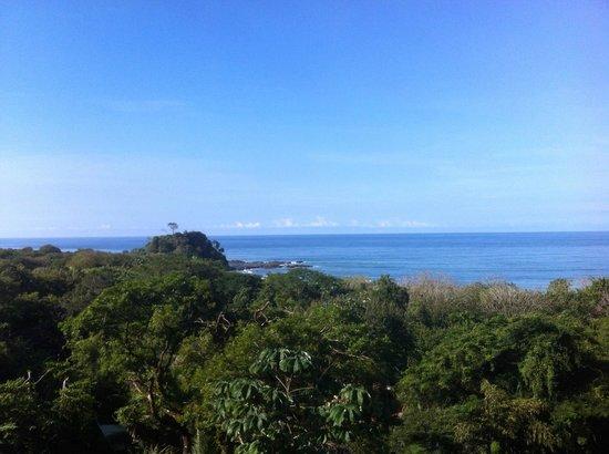 Hotel Moana: Wonderful ocean views