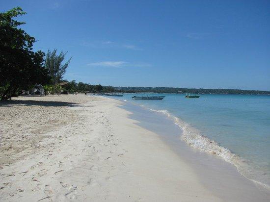 Negril Palms Hotel : пляж Негрила